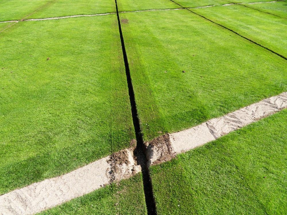 Jacquet SA - drainage intensif
